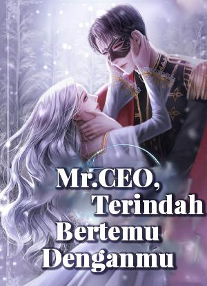 Mr.CEO, Terindah Bertemu Denganmu